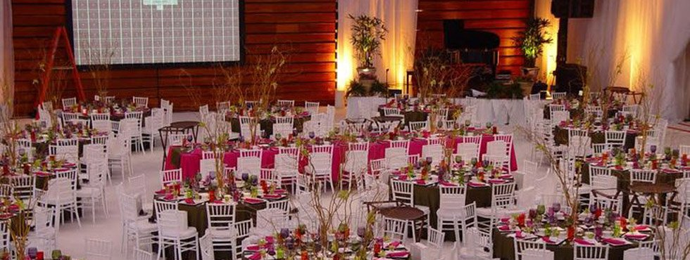Event rentals in brooklyn ny all affairs event rentals 10 off junglespirit Choice Image